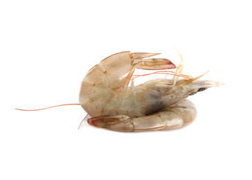 Fresh raw shrimps isolated on white. Healthy seafood