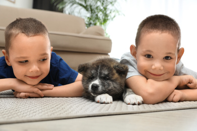Little boys with Akita inu puppy on floor at home. Friendly dog