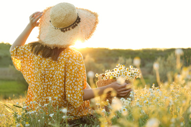 Woman with straw hat and handbag full of chamomiles resting in meadow