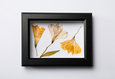 Frame with wild dried meadow flowers on white background, top view