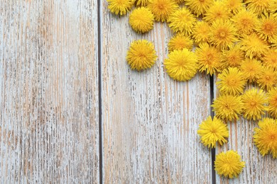Beautiful yellow dandelions on light wooden table, flat lay. Space for text
