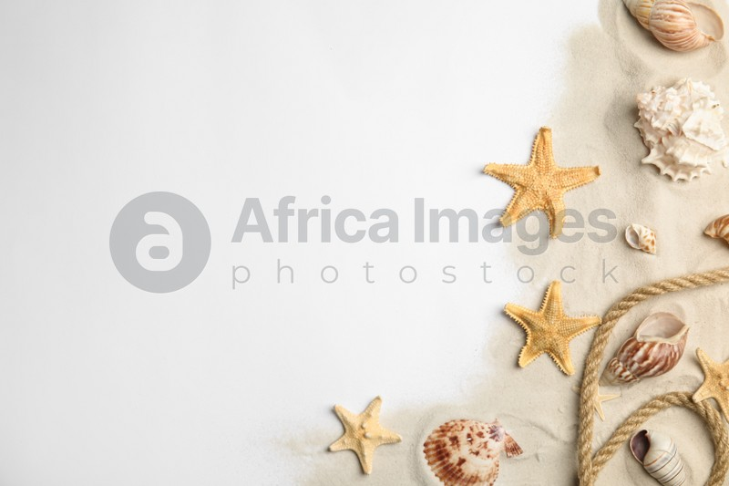 Beautiful sea stars, shells, rope and sand on white background, flat lay. Space for text