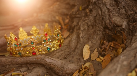 Beautiful golden crown on tree roots outdoors. Fantasy item