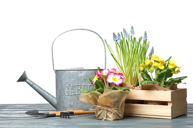 Composition with plants and gardening tools on table against white background