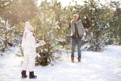 Father and daughter having snowball fight outdoors on winter day. Christmas vacation