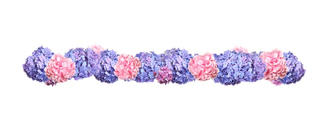 Delicate beautiful hortensia flowers on white background, top view. Banner design