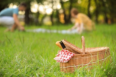 Wicker picnic basket with bottle of wine and bread on green grass