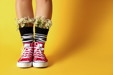 Woman with beautiful tender chamomile flowers in socks on yellow background, closeup. Space for text