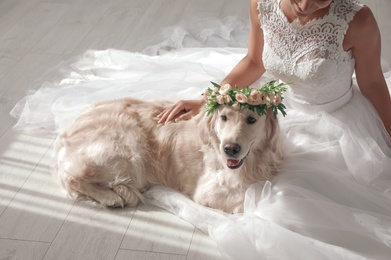 Bride and adorable Golden Retriever wearing wreath made of beautiful flowers indoors, closeup