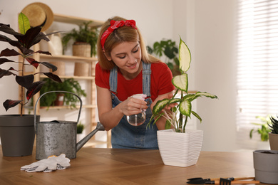 Young woman spraying Dieffenbachia plant at home. Engaging hobby