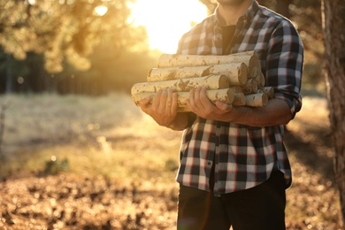 Man holding pile of cut firewood in forest, closeup