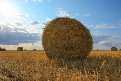 Beautiful view of agricultural field with hay bale