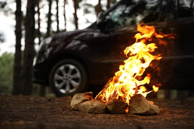 Beautiful bonfire with burning firewood near car in forest