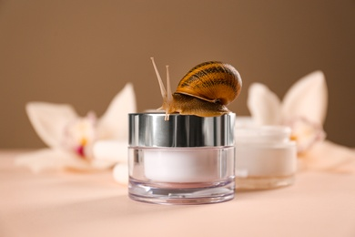 Organic cosmetics made with mucin and snail on table