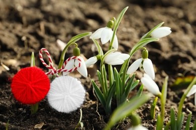 Traditional martisor near beautiful snowdrops outdoors, closeup. Beginning of spring celebration