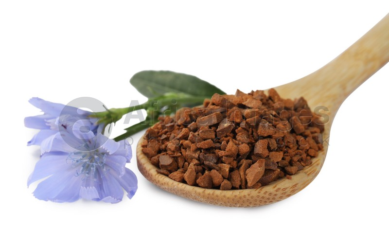 Spoon of chicory granules and flowers on white background