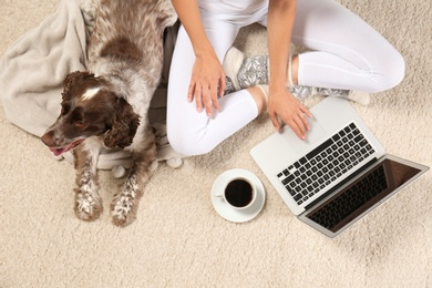 Top view of adorable Russian Spaniel with owner on light carpet, closeup