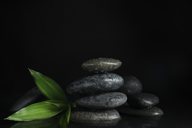 Stones and bamboo sprout in water on black background. Zen lifestyle