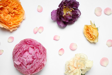 Beautiful floral composition with flowers on white background, flat lay