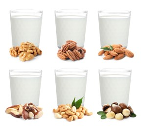 Set with different types of vegan milk and nuts on white background