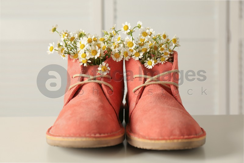 Beautiful tender chamomile flowers in pink boots on white table