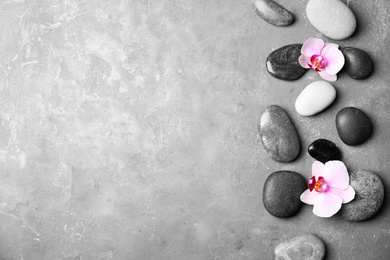 Stones with orchid flowers and space for text on grey background, flat lay. Zen lifestyle