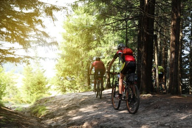 Group of cyclists riding bikes down forest trail