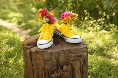 Shoes with beautiful flowers on tree stump outdoors