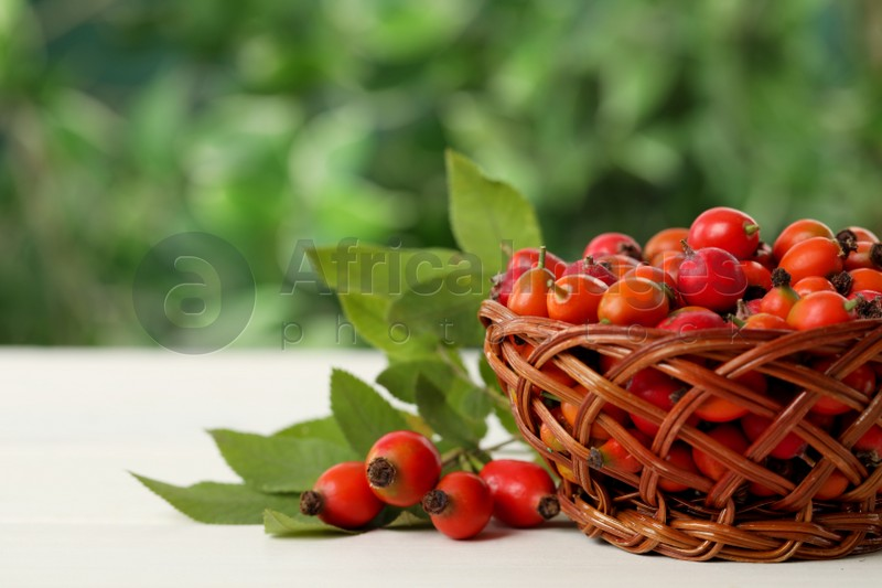 Ripe rose hip berries with green leaves on white wooden table outdoors. Space for text