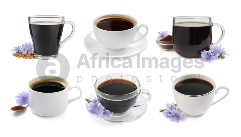 Set with chicory drink on white background