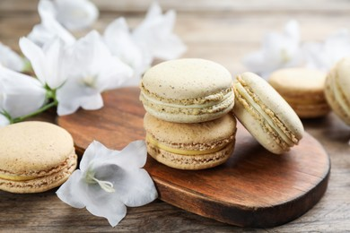Delicious macarons and white bellflowers on wooden table