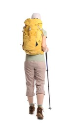 Female hiker with backpack and trekking poles on white background, back view