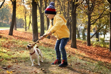 Cute little boy with his pet in autumn park
