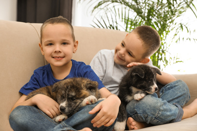 Little boys with Akita inu puppies on sofa at home. Friendly dogs