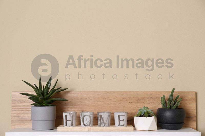 Wooden shelf with beautiful potted plants on beige wall. Interior design