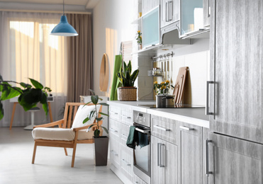 Stylish kitchen interior with green plants. Home decoration