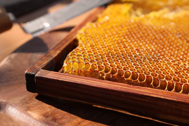 Uncapped honeycomb frame on wooden table, closeup