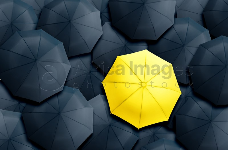 Yellow umbrella standing out of other ones, top view