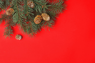 Top view of fir branches on red background, space for text. Winter holidays