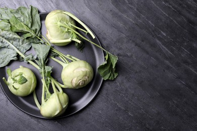 Whole ripe kohlrabi plants on grey table, top view. Space for text
