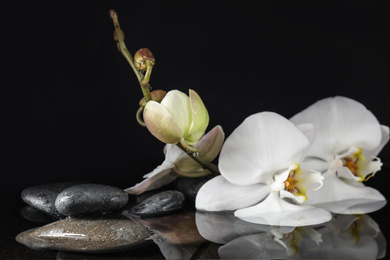 Stones and orchid flowers in water on black background. Zen lifestyle