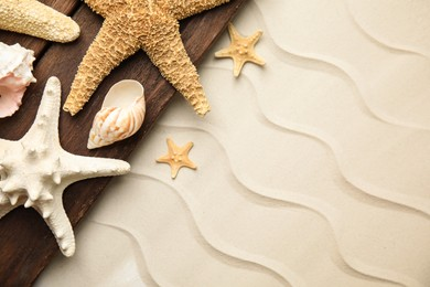 Beautiful sea stars and shells on sand, top view. Space for text
