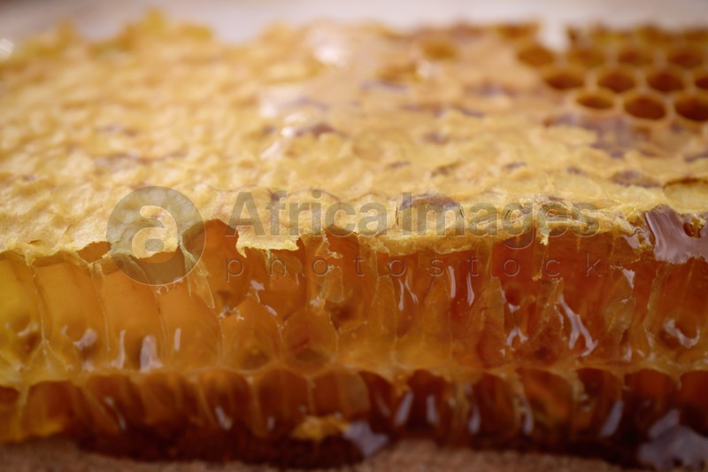 Uncapped filled honeycomb as background, closeup view