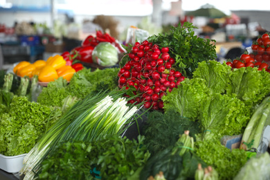 Fresh ripe vegetables and herbs on counter at wholesale market