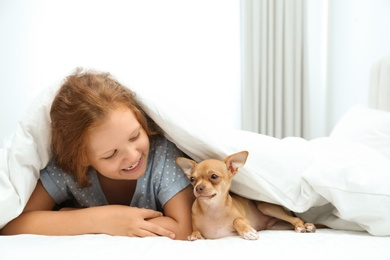 Little girl with her Chihuahua dog under blanket at home. Childhood pet
