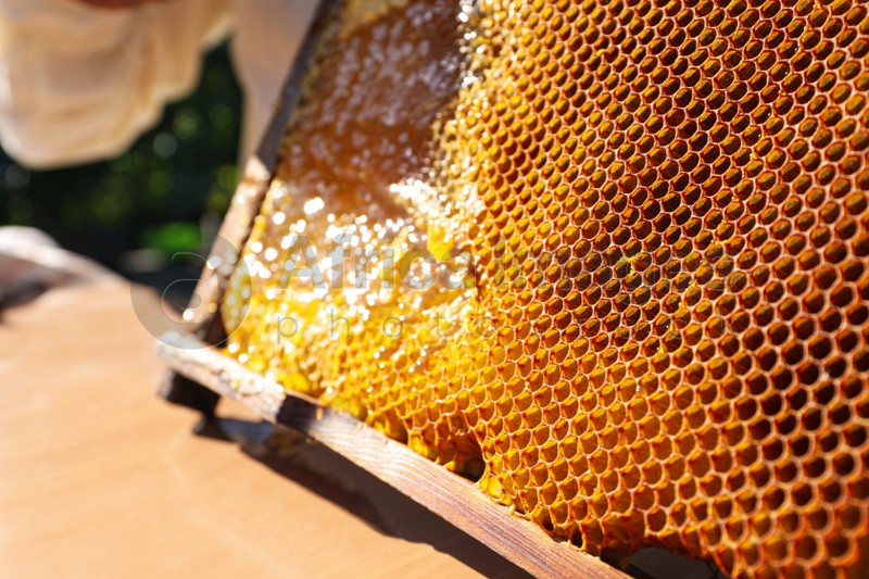 Uncapped honeycomb frame on wooden table outdoors, closeup