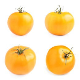 Set  with fresh ripe yellow tomatoes on white background
