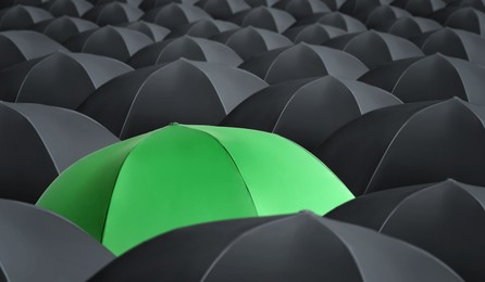Green umbrella standing out of other ones