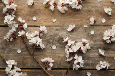 Flat lay composition with beautiful fresh spring flowers on wooden background