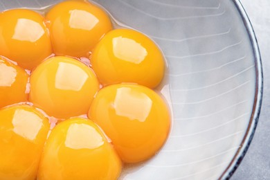 Bowl with raw egg yolks on table, above view